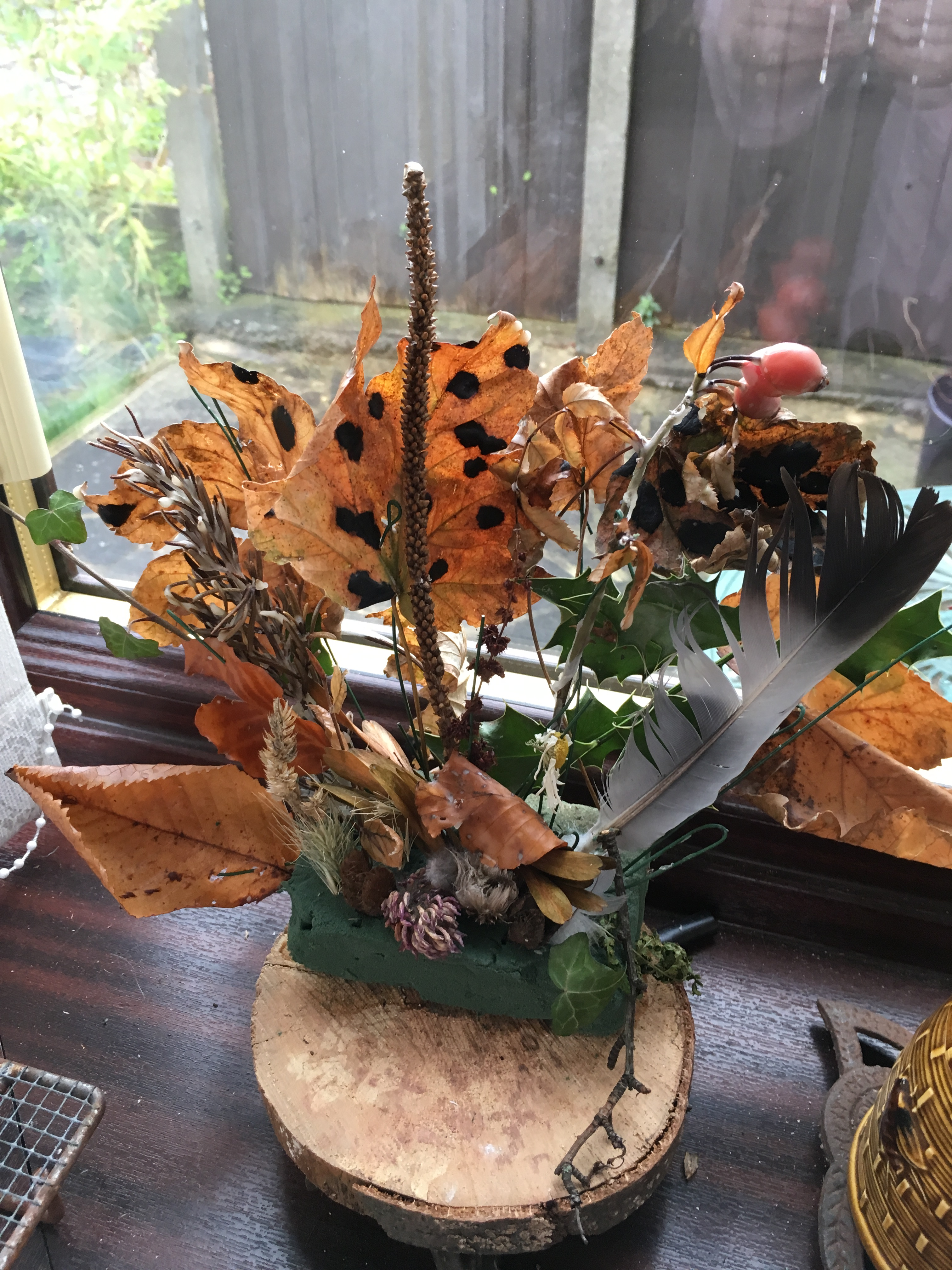 An arrangement of wax dipped autumn leaves and berries collected from woods, with a pigeon feather.  Mounted on a round slice of branch originally used as a prayer message (written on underside) from local church.